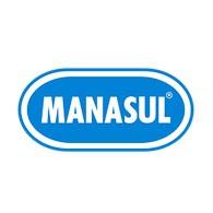 MANASUL INT